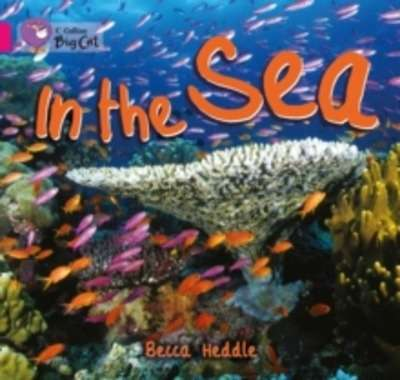 In the Sea : Band 01B/Pink B