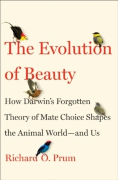 Evolution of beauty