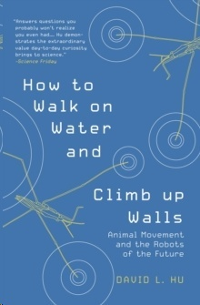 How to Walk on Water and Climb up Walls : Animal Movement and the Robots of the Future