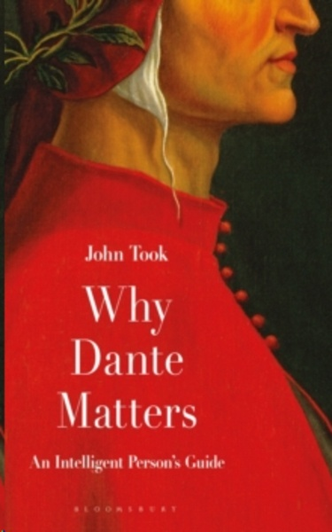 Why Dante Matters : An Intelligent Person's Guide